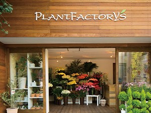 plantfactorys_02